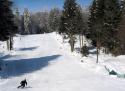 Ski areál České Žleby