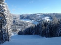 Lišák Stříbrná ski areál Krušné hory