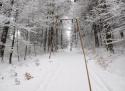 Ski areál Přímda