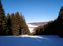 Saporo - Kraslice sjezdovka Krušné hory
