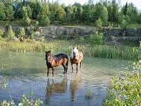 Chalupa v CHKO Bílé Karpaty