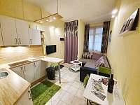Apartmán 466