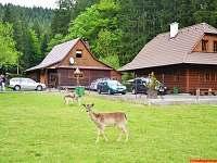 Chalupy u dančí a jelení obory